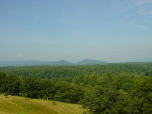 A view of the Blue Mountains from the Biltmore Estate.