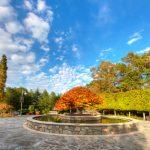 Arboretum in asheville