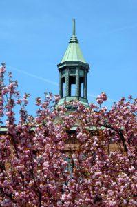 Church in Spring time
