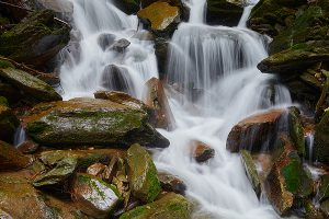 waterfall in Pisgah Forest